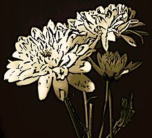 White Flower Woodcut by Colin Bentham