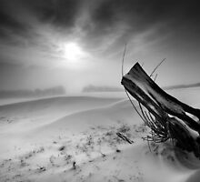 Willow's Gap BW by Andy Freer