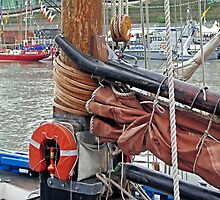 LK243 Swan, gaff yoke, sail/mast hoops by Woodie