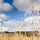 Wind Power by Walter Quirtmair