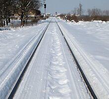 Snowy Rail by branko stanic