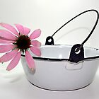 pink flower in enamel bowl by Lynne Prestebak