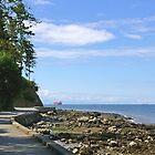 Stanley Park Seawall 1 by Tom  Reynen