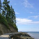 Curving Seawall in Stanley Park by Tom  Reynen