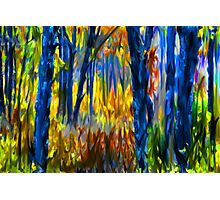 The Finger Painted Forest Photographic Print