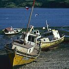 Fishing boats, Chiloe, Chile by Syd Winer