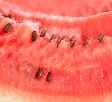 Watermelon by luissantos84