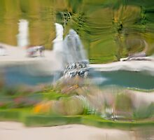 The garden at Versailles Palace seen through old glass by Michael Brewer