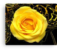 Abstract Rose Macro Canvas Print