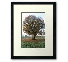 Autumn on Hampstead Heath Framed Print