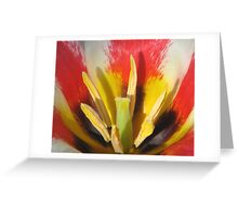 The Heart of a Tulip Greeting Card