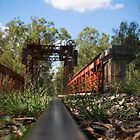 Tocumwal Rail Bridge by Bevlea Ross