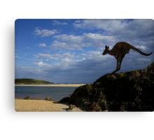 Sawtell Skippy Canvas Print