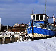 Battered & Blue by mikebov