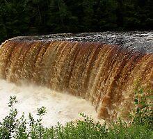 Tahquamenon Upper Falls by Bob Hardy