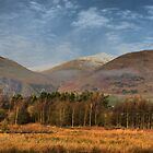 The Ochil Hills by evisonphoto