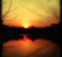 Setting sun © by Dawn M. Becker