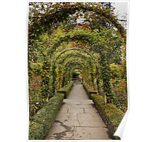 Through the Arch Poster