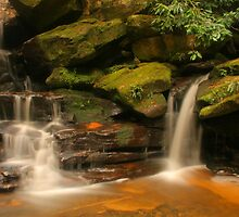 Somersby Cascade by Michael Matthews