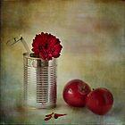 Apples by Þórdis B.