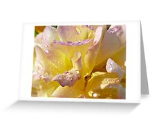 Nature's Jewels Greeting Card