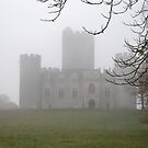 Castle in a foggy morning by 29Breizh33