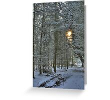 Down Hall Woods Greeting Card