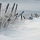 Winter fence by ilpo laurila
