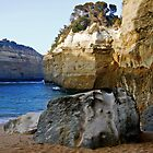 Loch Ard Gorge # 1 by GUNN-PHOTOS
