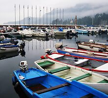 Lake Garda, Italy by jlv-