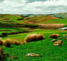 Hokonui hills Southland NZ by SouthernScape