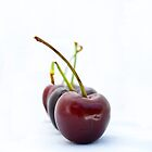 Chorus Line - Cherries by Helen K. Passey
