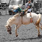 Taralga Rodeo, NSW   January 2012 by Patricia  Knowles