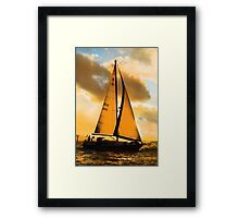 Almost Gold Silhouette Framed Print
