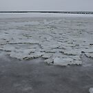Icy Wadden Sea by Lindie