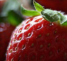Strawberry by Christina M. Munich