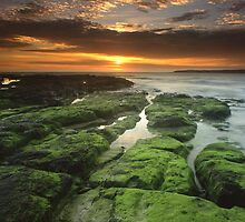 """Symphony of the Sun"" ∞ Shellharbour, NSW - Australia by Jason Asher"