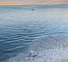 Dead Sea salt crystals and lone swimmer by Tony Roddam