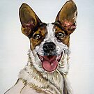 Jack Russell pet portrait by db Artstudio by Deborah Boyle