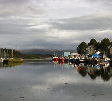 Tarbert Harbour, Argyll, Scotland ~ The Long View by artwhiz47