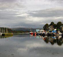 Tarbert Harbour, Argyll, Scotland ~ The Long View by artwhiz47