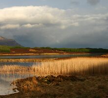 Cul Mor & Suilven across Loch Borralan, Assynt by ScotLandscapes
