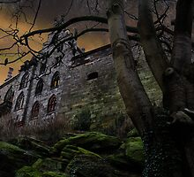 Once upon a midnight dreary... by Javimage