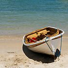 Clifton Gardens row boat by Antoine de Paauw