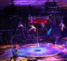 The Big Ring - Ringling Brothers Circus - Salisbury, MD by searchlight