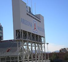 Football Sign, Arizona Wildcats, Tucson by AuntieBarbie