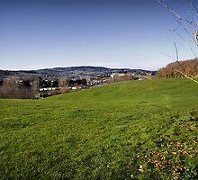Devon Hills by Country  Pursuits