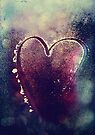 Icy Heart I by Sybille Sterk