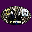 CSI: Baker Street by Sani Evans