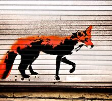 Urban Fox, by Stewy by Nick Coates